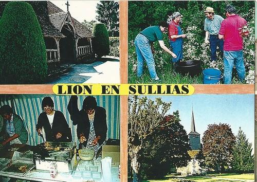 cartes-postales-lion-ar0006